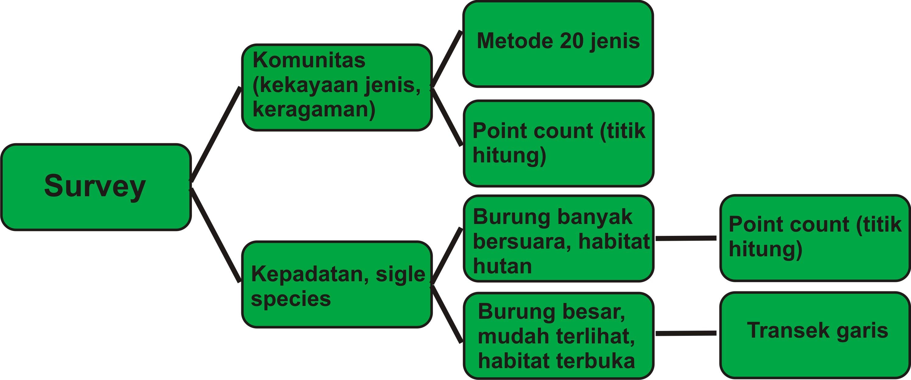 Pilih pilih metode survei burung nusantara birds indonesia pilih pilih metode survei ccuart Images