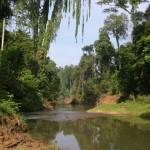 Way Canguk, Bukit Barisan Selatan National Park