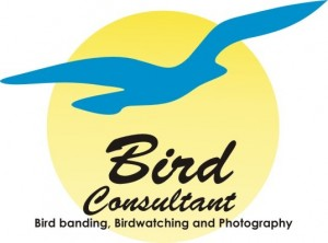 bird consultant