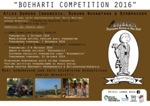 boeharti-competition