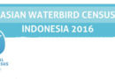 Asian Waterbird Census (AWC) 2017