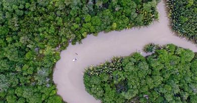 Sayap-sayap Kehidupan di Pulau Bunyu